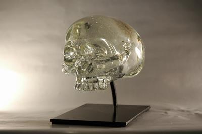 Randall Sach Skull ART LOGIC