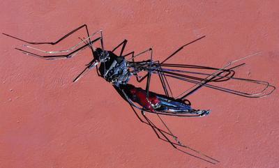Roland Weight Mosquito ART LOGIC