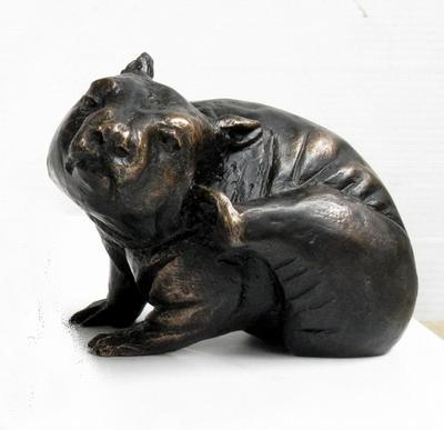 Tim Thomson Scratching Hairy Nosed Wombat ART LOGIC