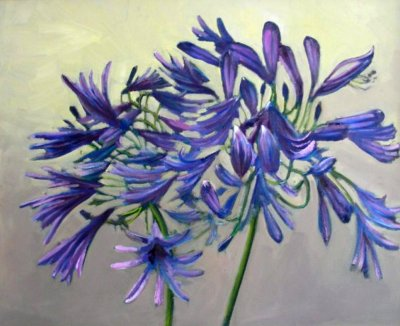Greg O'Leary Agapanthus ART LOGIC