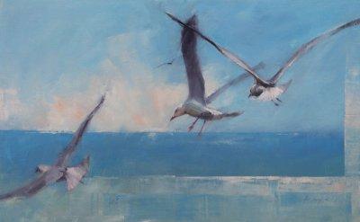 John Lacey South Coast Gulls ART LOGIC