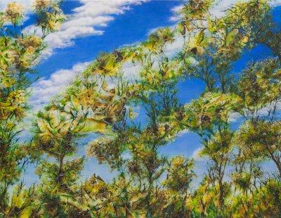 Liesbeth Pockett, Treetop Sky, ART LOGIC