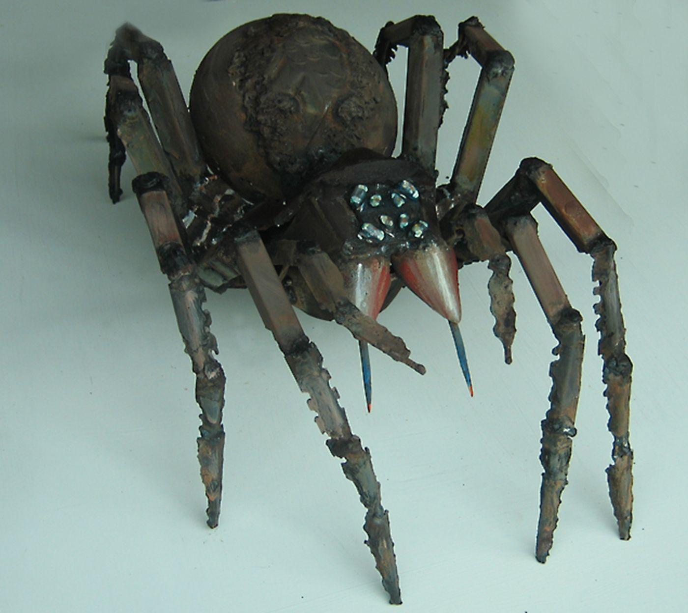 Trapdoor Spider Art Logic