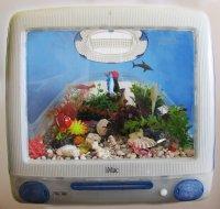 Tom Mentzel Finding Nemo ART LOGIC
