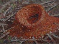 Roland Weight,  Ants Nest, ART LOGIC