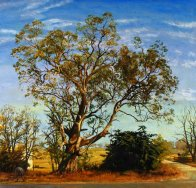 Brian Dunlop, Beechworth Gum, Art Logic